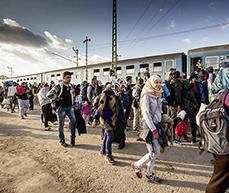 Hasskriminalität gegen Asylsuchende ist nicht von wirtschaftlichen Motiven getrieben