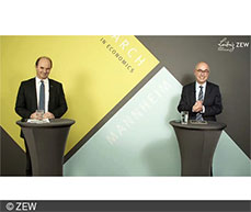 Martin Brudermüller and ZEW President Achim Wambach discussing BASF's sustainability strategy